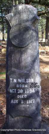 WILSON, T N - Scott County, Arkansas | T N WILSON - Arkansas Gravestone Photos
