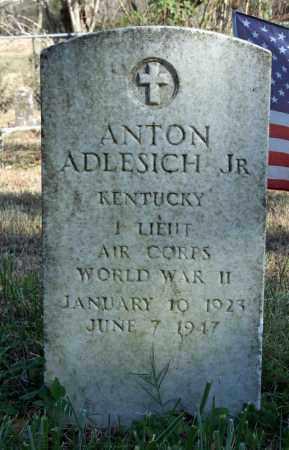 ADLESICH (VETERAN WWII), ANTON JR - Searcy County, Arkansas | ANTON JR ADLESICH (VETERAN WWII) - Arkansas Gravestone Photos
