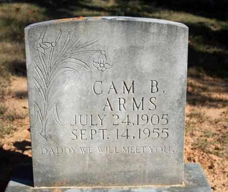 ARMS, CAM B. - Searcy County, Arkansas   CAM B. ARMS - Arkansas Gravestone Photos