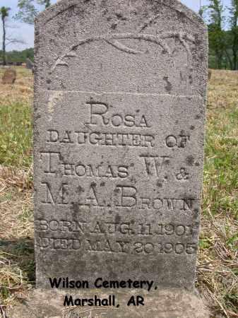 BROWN, ROSA - Searcy County, Arkansas   ROSA BROWN - Arkansas Gravestone Photos