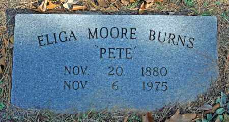 MOORE BURNS, ELIGA - Searcy County, Arkansas | ELIGA MOORE BURNS - Arkansas Gravestone Photos