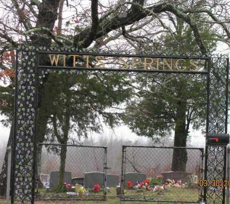 *WITTS SPRINGS CEMETERY GATE,  - Searcy County, Arkansas |  *WITTS SPRINGS CEMETERY GATE - Arkansas Gravestone Photos