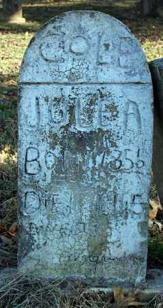 COLE, JULE  A. - Searcy County, Arkansas | JULE  A. COLE - Arkansas Gravestone Photos