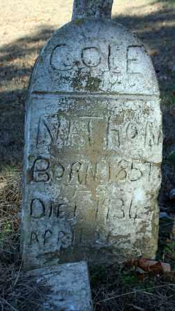 COLE, NATHAN - Searcy County, Arkansas   NATHAN COLE - Arkansas Gravestone Photos