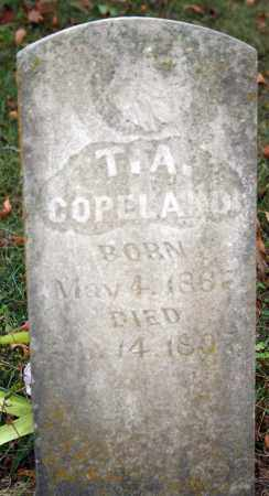 COPELAND, T. A. - Searcy County, Arkansas | T. A. COPELAND - Arkansas Gravestone Photos