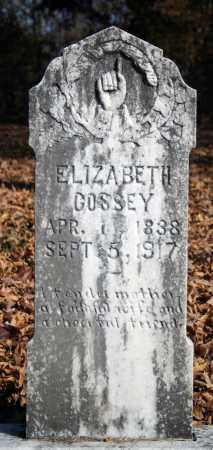 COSSEY, ELIZABETH - Searcy County, Arkansas   ELIZABETH COSSEY - Arkansas Gravestone Photos