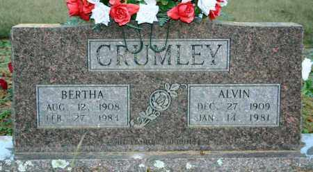 CRUMLEY, BERTHA - Searcy County, Arkansas | BERTHA CRUMLEY - Arkansas Gravestone Photos