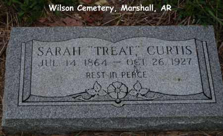 TREAT CURTIS, SARAH - Searcy County, Arkansas | SARAH TREAT CURTIS - Arkansas Gravestone Photos