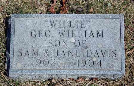 "DAVIS, GEORGE WILLIAM ""WILLIE"" - Searcy County, Arkansas   GEORGE WILLIAM ""WILLIE"" DAVIS - Arkansas Gravestone Photos"