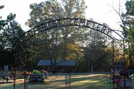 *DEPRIEST CEMETERY GATE,  - Searcy County, Arkansas |  *DEPRIEST CEMETERY GATE - Arkansas Gravestone Photos