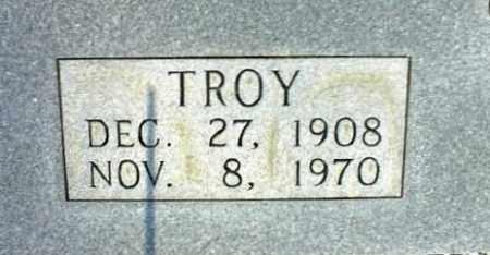 DODSON, TROY 2 - Searcy County, Arkansas | TROY 2 DODSON - Arkansas Gravestone Photos