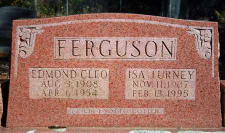 FERGUSON, ISA - Searcy County, Arkansas | ISA FERGUSON - Arkansas Gravestone Photos