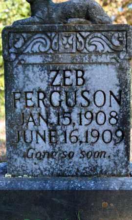 FERGUSON, ZEB - Searcy County, Arkansas   ZEB FERGUSON - Arkansas Gravestone Photos