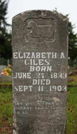 GILES, ELIZABETH A. (BROOKS) - Searcy County, Arkansas | ELIZABETH A. (BROOKS) GILES - Arkansas Gravestone Photos