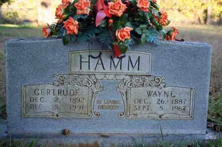 HAMM, WAYNE - Searcy County, Arkansas   WAYNE HAMM - Arkansas Gravestone Photos