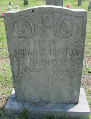 DENTON HARNESS, SARAH ELIZABETH - Searcy County, Arkansas | SARAH ELIZABETH DENTON HARNESS - Arkansas Gravestone Photos