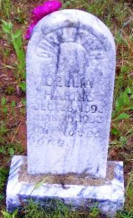 HARRIS, DELLIA - Searcy County, Arkansas   DELLIA HARRIS - Arkansas Gravestone Photos