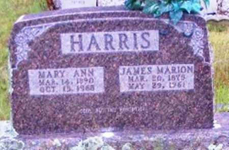 HARRIS, JAMES MARION - Searcy County, Arkansas | JAMES MARION HARRIS - Arkansas Gravestone Photos