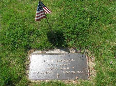 JACKSON (VETERAN WWII), JIM B - Searcy County, Arkansas | JIM B JACKSON (VETERAN WWII) - Arkansas Gravestone Photos
