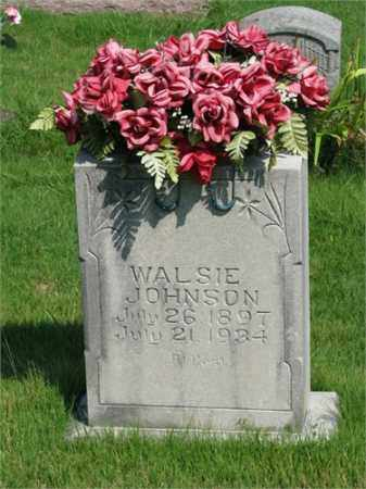 JOHNSON, WALSIE - Searcy County, Arkansas | WALSIE JOHNSON - Arkansas Gravestone Photos