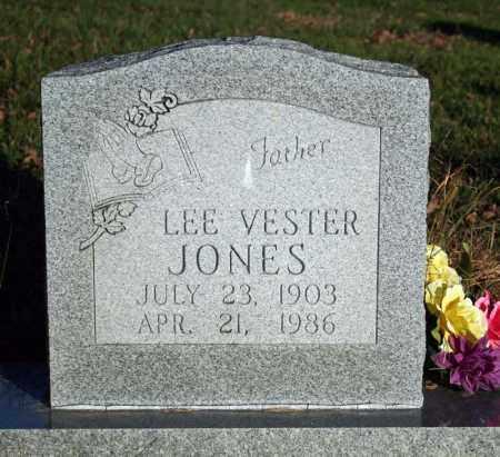 JONES, LEE VESTER - Searcy County, Arkansas | LEE VESTER JONES - Arkansas Gravestone Photos