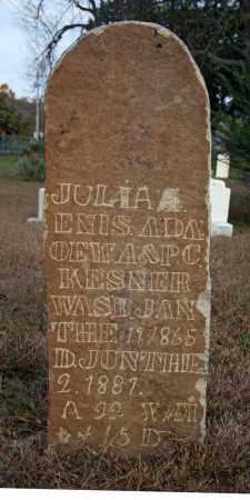 KESNER, JULIA ENIS A - Searcy County, Arkansas | JULIA ENIS A KESNER - Arkansas Gravestone Photos