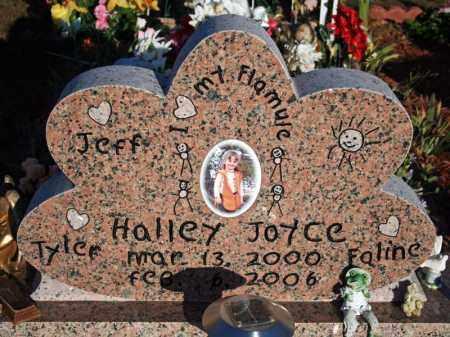 MAGNESS, HALLEY JOYCE - Searcy County, Arkansas | HALLEY JOYCE MAGNESS - Arkansas Gravestone Photos
