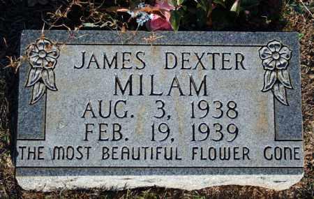 MILAM, JAMES DEXTER - Searcy County, Arkansas | JAMES DEXTER MILAM - Arkansas Gravestone Photos