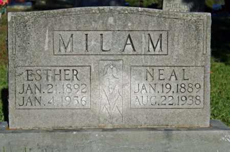 MILAM, NEAL - Searcy County, Arkansas   NEAL MILAM - Arkansas Gravestone Photos