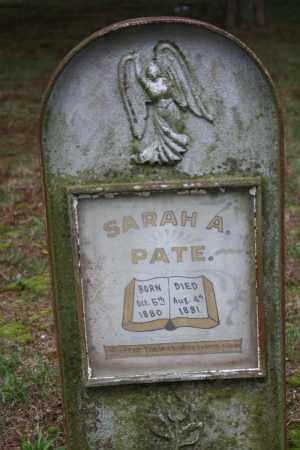 PATE, SARAH A. - Searcy County, Arkansas   SARAH A. PATE - Arkansas Gravestone Photos