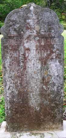 SHORT, WILBURN J - Searcy County, Arkansas   WILBURN J SHORT - Arkansas Gravestone Photos