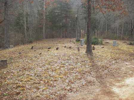 *SPRING CREEK CEMETERY OVERVIE,  - Searcy County, Arkansas |  *SPRING CREEK CEMETERY OVERVIE - Arkansas Gravestone Photos