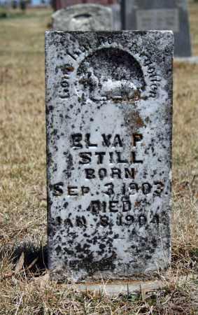 STILL, ELVA P. - Searcy County, Arkansas   ELVA P. STILL - Arkansas Gravestone Photos