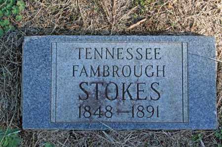 STOKES, TENNESSEE - Searcy County, Arkansas | TENNESSEE STOKES - Arkansas Gravestone Photos