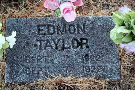 TAYLOR, EDMON - Searcy County, Arkansas   EDMON TAYLOR - Arkansas Gravestone Photos