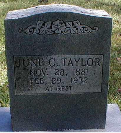 TAYLOR, JUNE C. - Searcy County, Arkansas   JUNE C. TAYLOR - Arkansas Gravestone Photos