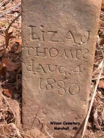 THOMPSON, LIZA J. - Searcy County, Arkansas | LIZA J. THOMPSON - Arkansas Gravestone Photos