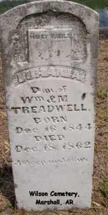 TREADWELL, LUHANIA - Searcy County, Arkansas   LUHANIA TREADWELL - Arkansas Gravestone Photos