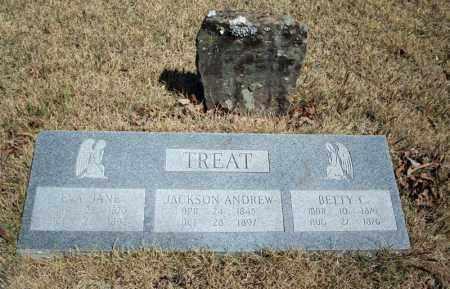 TREAT, EVA JANE - Searcy County, Arkansas | EVA JANE TREAT - Arkansas Gravestone Photos