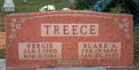 TREECE, BLAKE A. - Searcy County, Arkansas | BLAKE A. TREECE - Arkansas Gravestone Photos