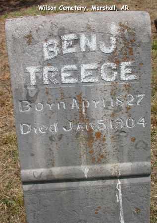 TREECE, BENJ - Searcy County, Arkansas   BENJ TREECE - Arkansas Gravestone Photos