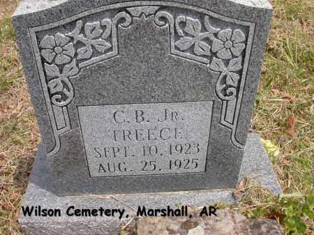 TREECE, C.B. JR. - Searcy County, Arkansas | C.B. JR. TREECE - Arkansas Gravestone Photos
