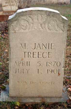 TREECE, M. JANIE - Searcy County, Arkansas | M. JANIE TREECE - Arkansas Gravestone Photos