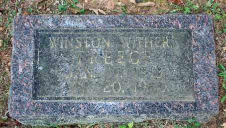 TREECE, WINSTON WITHERS - Searcy County, Arkansas | WINSTON WITHERS TREECE - Arkansas Gravestone Photos