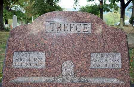 TREEECE, E. BARTON - Searcy County, Arkansas | E. BARTON TREEECE - Arkansas Gravestone Photos
