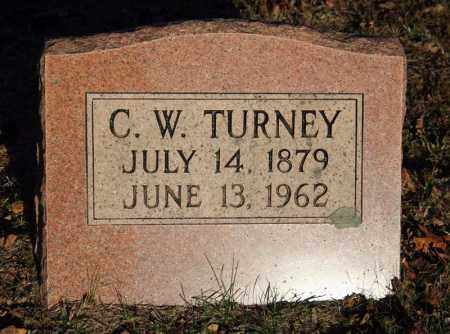 "TURNEY, COLUMBUS WILLIAM ""LUM"" - Searcy County, Arkansas | COLUMBUS WILLIAM ""LUM"" TURNEY - Arkansas Gravestone Photos"