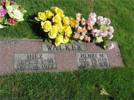 WALKER, HENRY M. - Searcy County, Arkansas | HENRY M. WALKER - Arkansas Gravestone Photos