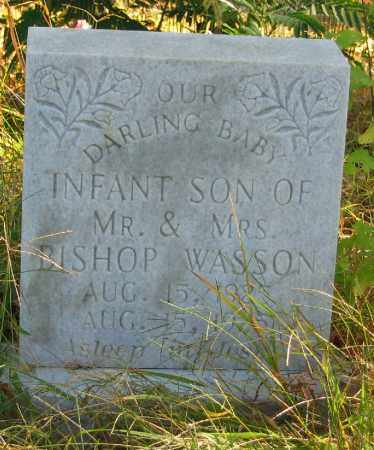 WASSON, INFANT SON - Searcy County, Arkansas | INFANT SON WASSON - Arkansas Gravestone Photos