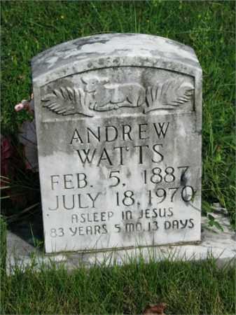 WATTS, ANDREW - Searcy County, Arkansas | ANDREW WATTS - Arkansas Gravestone Photos