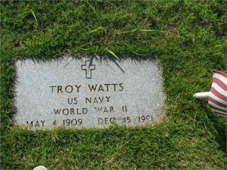 WATTS (VETERAN WWII), TROY - Searcy County, Arkansas | TROY WATTS (VETERAN WWII) - Arkansas Gravestone Photos
